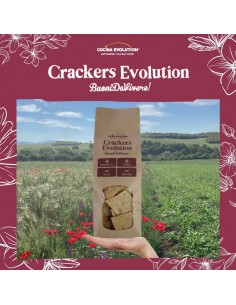 CRACKERS EVOLUTION CON...